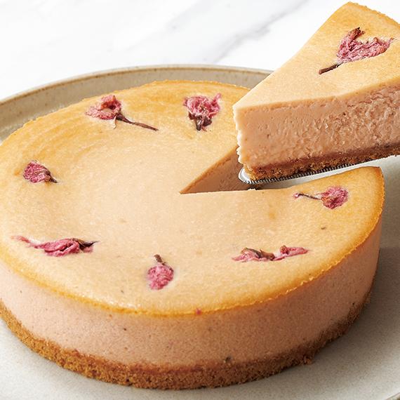 フレイバー さくらチーズケーキ 季節限定 春ギフト